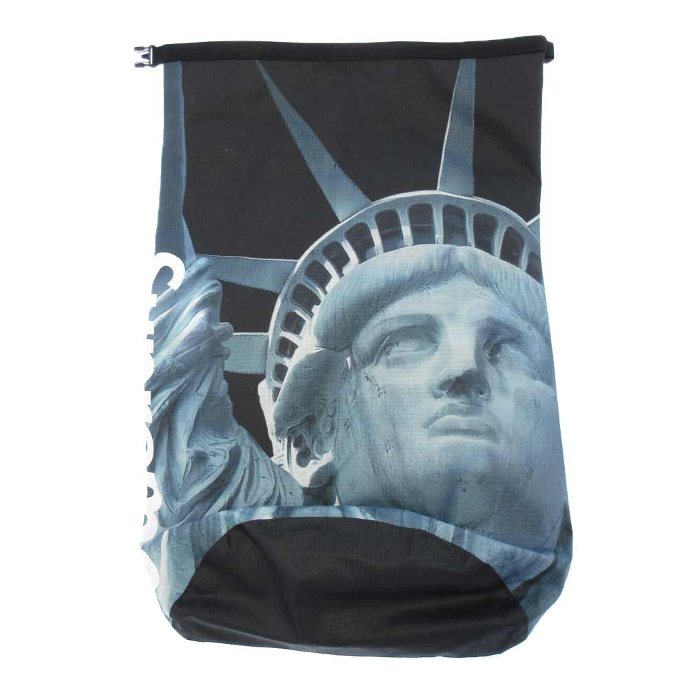 ×The North Face Statue of Liberty Waterproof Backpack 自由の女神プリントバックパック リュックサック