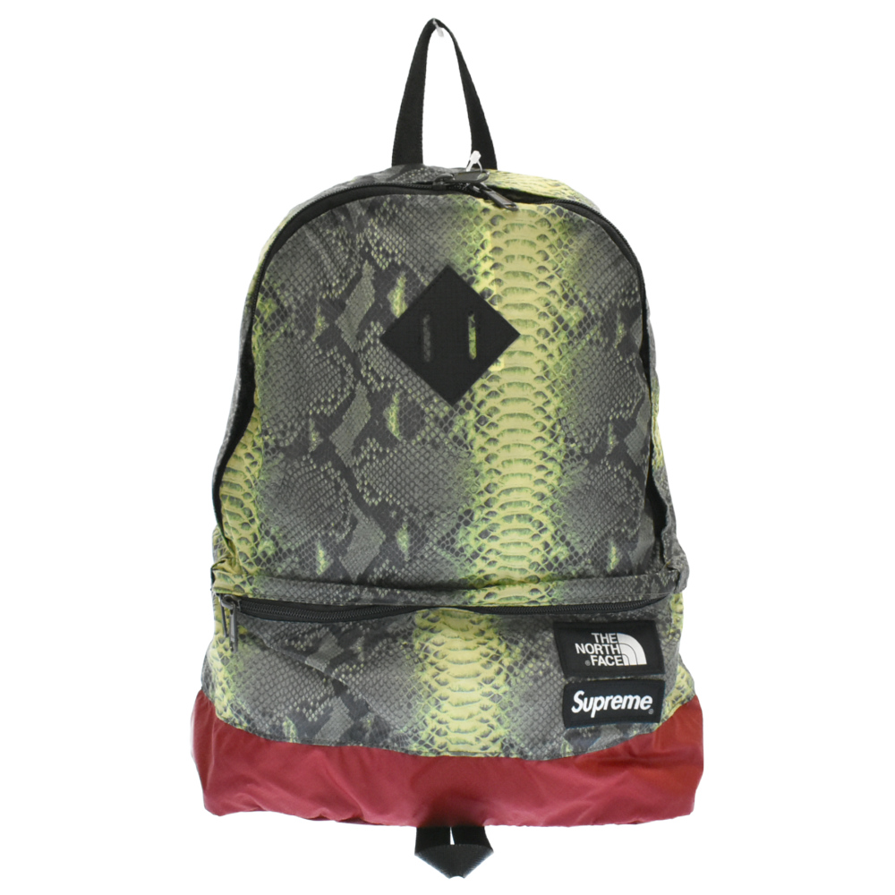 ×THE NORTH FACE スネーク柄 デイパック Snakeskin Day Pack バックパック リュック