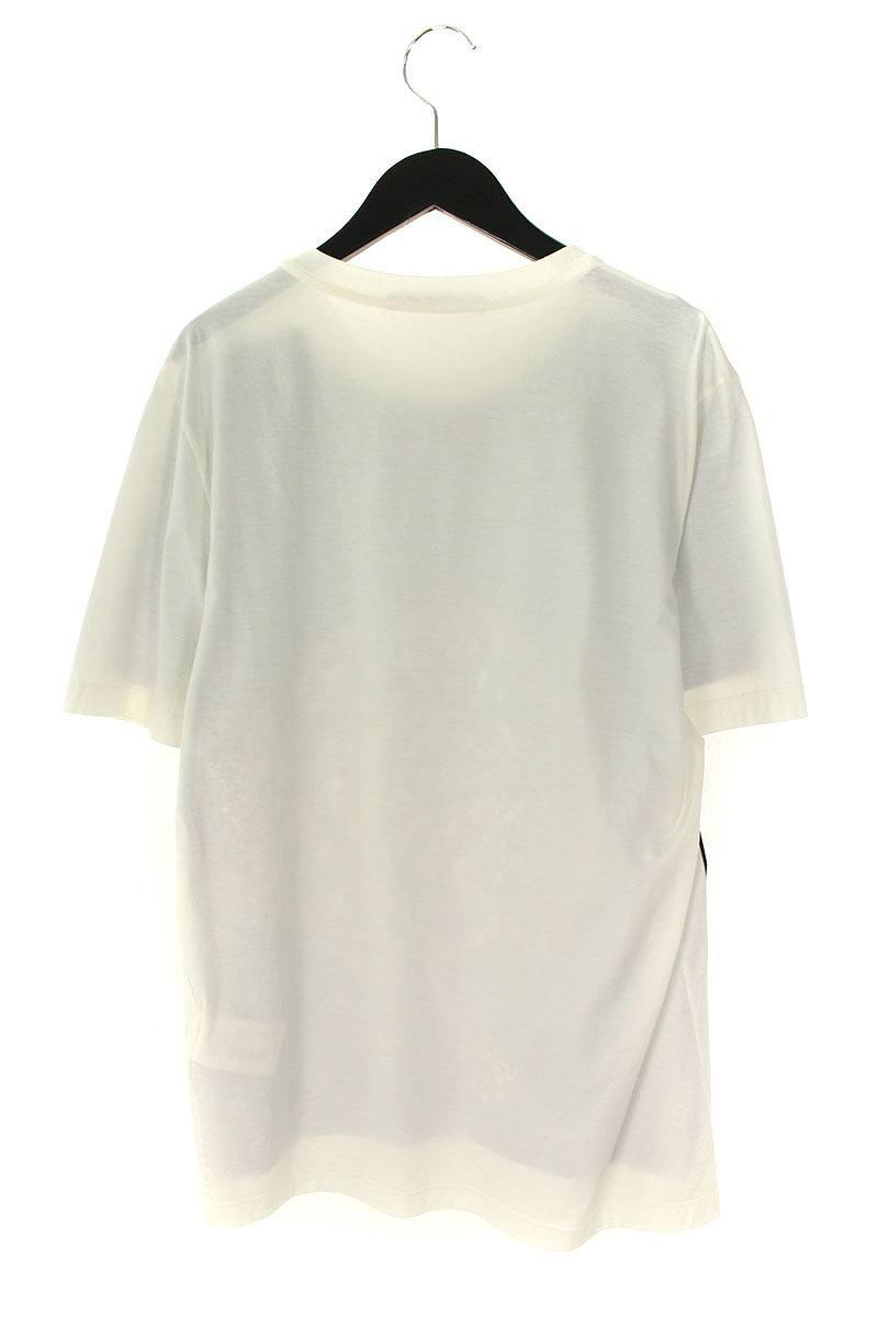 チャップマンブラザーズサバンナライオンプリントTシャツ